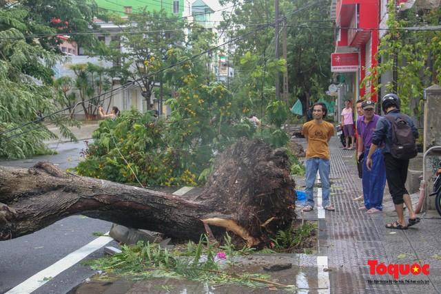 Cây xanh tại đường Bến Nghé bị bật gốc đè lên các phương tiện đỗ bên đường.