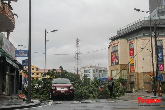 Bão số 5 gây gió to, mưa lớn, nhiều cây xanh tại TP. Huế đổ ngổn ngang 4