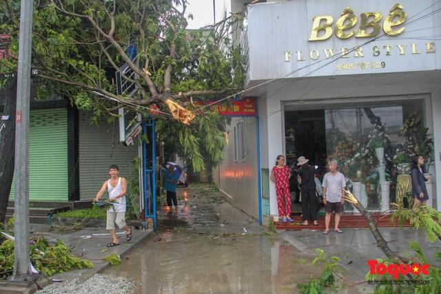 Người dân vất vả dọn dẹp các nhánh cây bị gãy để có lối đi.