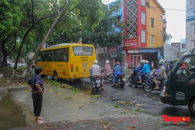 Giao thông trên nhiều tuyến đường tại TP Huế ách tắc cục bộ do bị cây chắn.