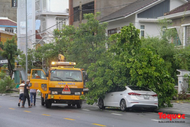 Lực lượng Công an, Công ty cây xanh, Điện lực, viễn thông... đã khẩn trương có mặt tại hiện trường để cưa những cây đổ, thu dọn dây điện... đảm bảo an toàn giao thông.