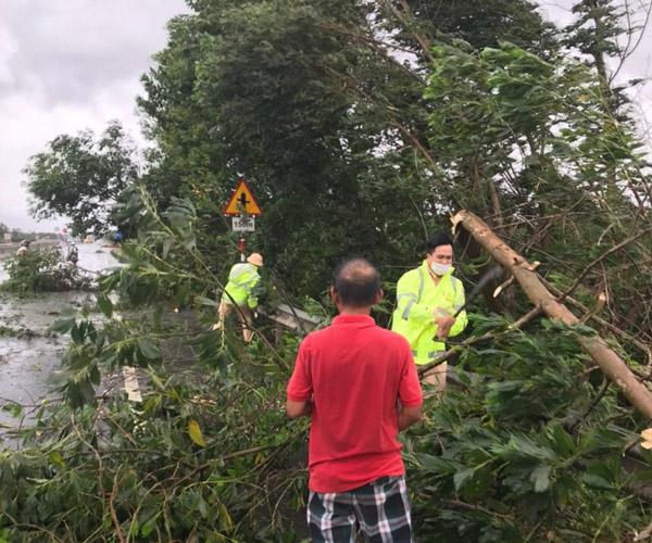 Lực lượng Công an Quảng tham gia dọn dẹp cây xanh do bão số 5 làm bị gãy đổ.