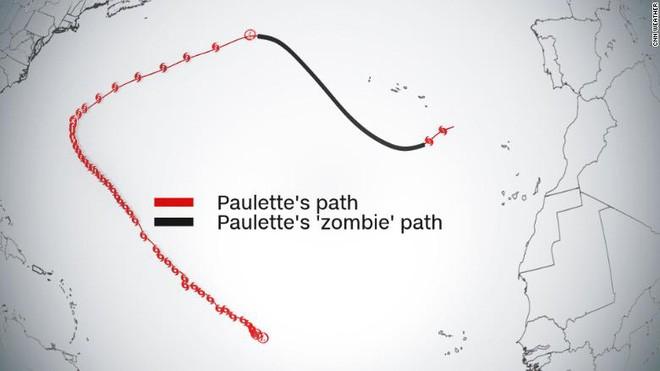 Hành trình 'chết đi sống lại' của bão Paulette trên Đại Tây Dương