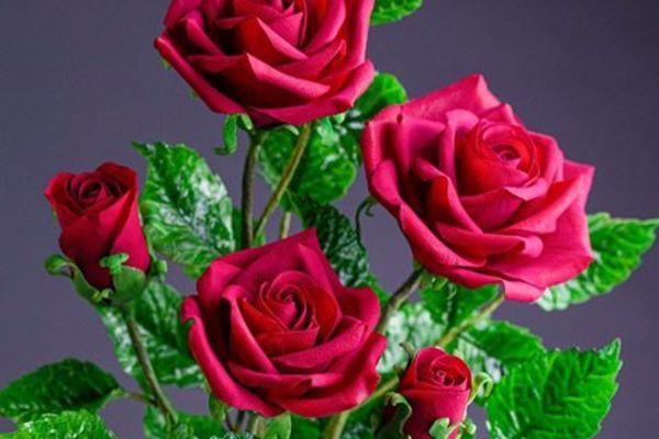 Sự thật về những bông hoa đẹp mê hồn khiến ai cũng trầm trồ tán dương 2