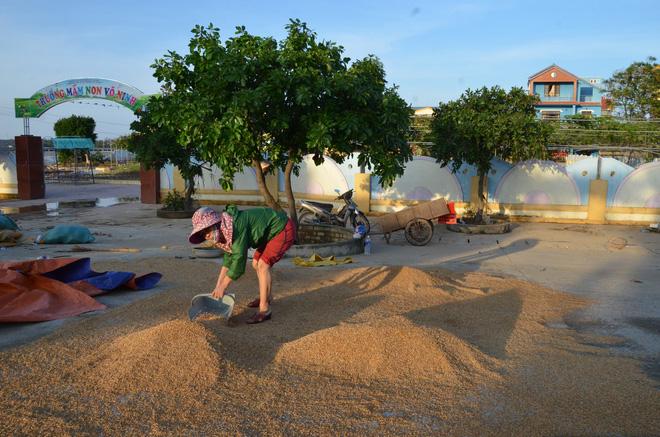 Xã Võ Ninh, huyện Quảng Ninh, tỉnh Quảng Bình giáp sông Nhật Lệ, song song với trục Quốc lộ 1A, là nơi bị ngập lụt nặng nề trong cơn lũ.