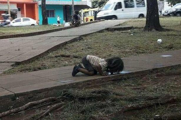 Bức ảnh cô bé uống nước từ vũng nước bẩn trên đường khiến nhiều người không khỏi bàng hoàng.
