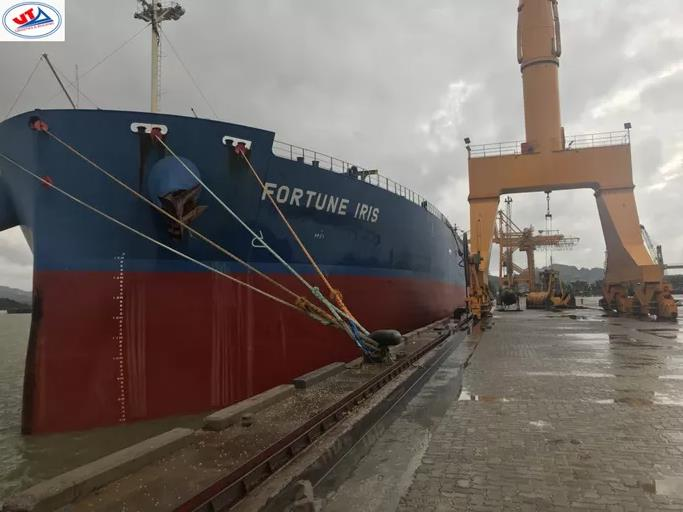 Tàu M/V Fortune Iris lúc cập cảng ở TP. HCM. Ảnh: Báo Người Lao Động