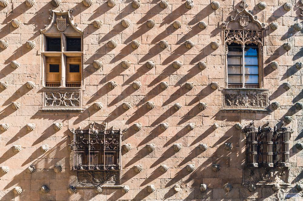 Mỗi cửa sổ của tòa nhà có một hình dáng khác nhau