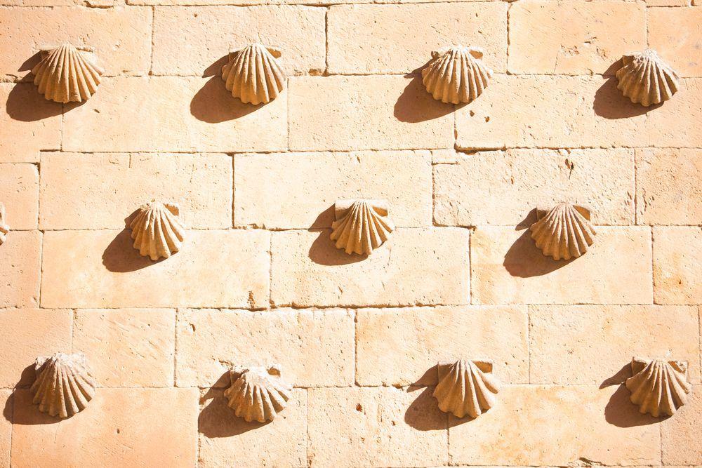 Những vỏ sò gắn đầy trên mặt tiền của tòa lâu đài