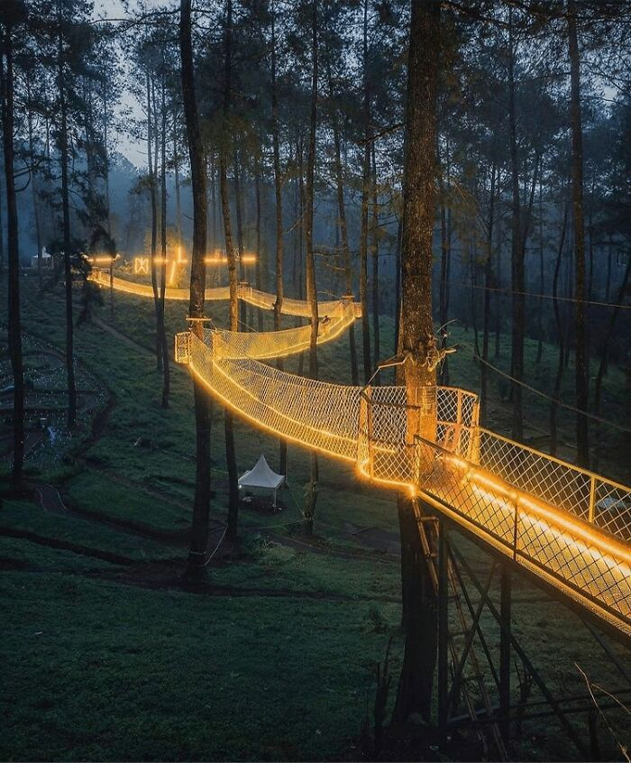 Cây cầu treo ''phát ánh sáng'' kỳ diệu trong khu rừng Indonesia