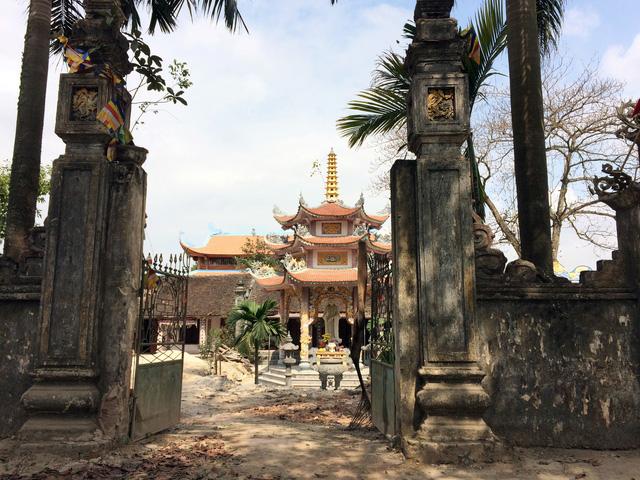 Chùa làng Phụ Chính - nơi 2 cây sưa quý vừa được chặt hạ để chờ bán đấu giá.