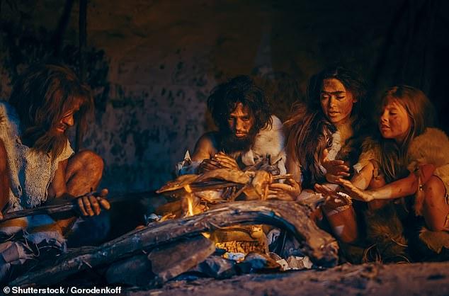 Người tiền sử có thể phải ngủ đông trong hang để tránh cái lạnh. Ảnh minh họa: Daily Mail