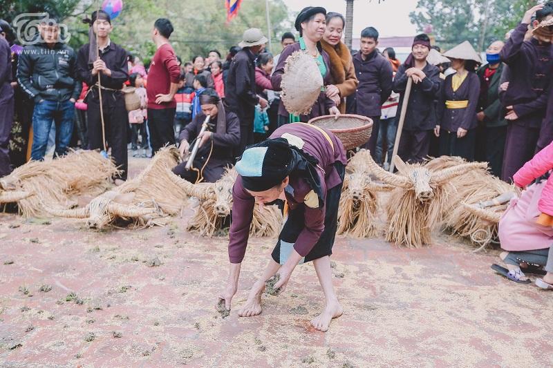 Độc đáo lễ hội trâu rơm bò rạ mùng 4 Tết, trai làng giả gái xuống đồng gieo hạt đầu năm 19