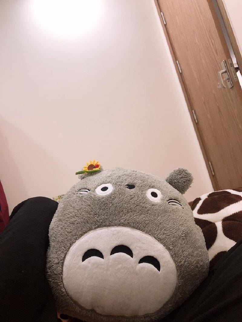 Những chú gấu bông của Henry