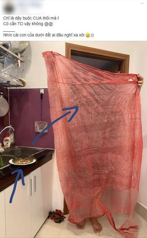 Hí hửng mua cua 'xịn' về tẩm bổ, khách hàng được 'khuyến mãi' mảnh vải siêu to khổng lồ 5