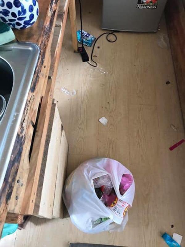 Phẫn nộ nhóm du khách thiếu ý thức, để lại 'bãi chiến trường' ngập toàn rác sau khi thuê homestay Đà Lạt 6
