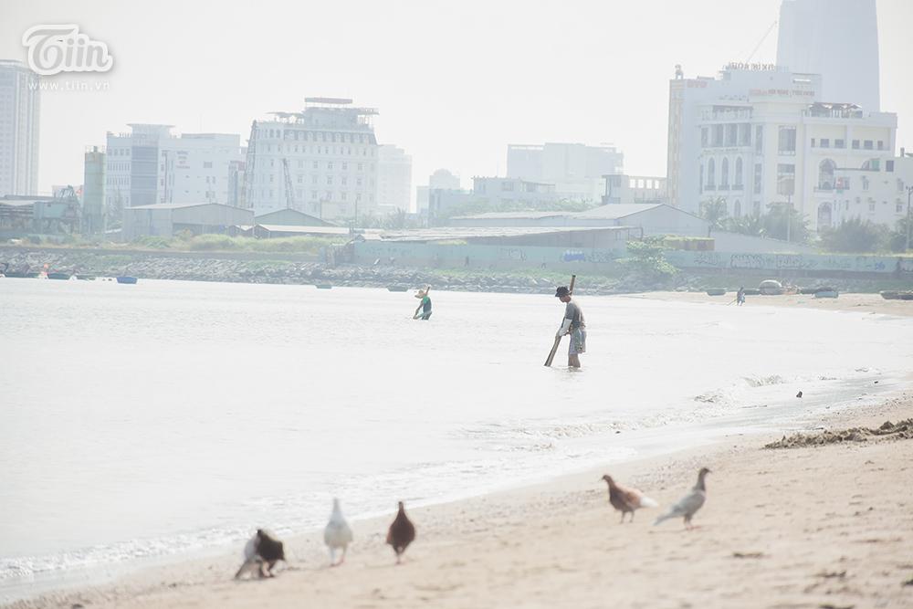 Họ đứng cách nhau vài mét để nước không đụcvà bắt đầu làm việc từ khoảng 8h sáng. Một người dân cho biết dù sợ nắng nóng nhưng không thể tranh thủ đi cào ốc sớm hơn bởi buổi sáng, nhiều người đi tắm biển, nước biển đục ốc không vào bờ.