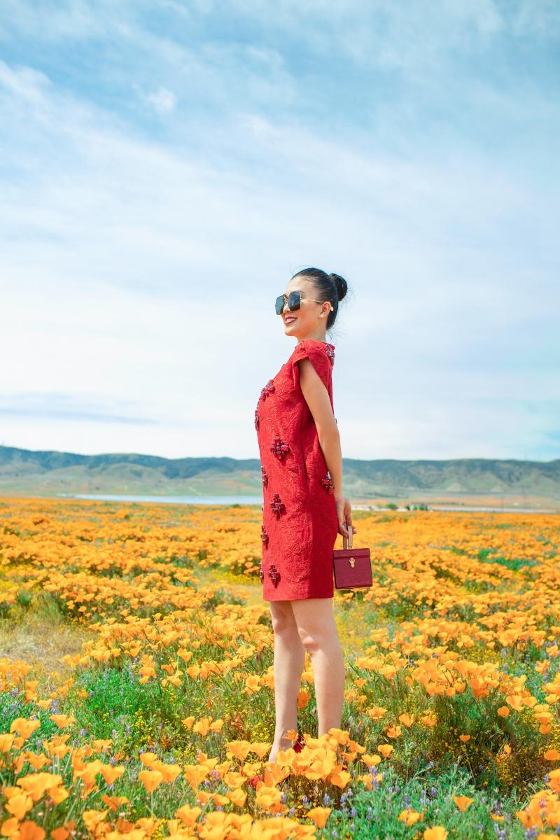 Bà mẹ một con khoe sắc vóc quyến rũ giữa cánh đồng đầy hoa tại Nam Cali. Chiếc váy mang sắc đỏ với phom dáng được tinh chỉnh khéo léo giúp Hằng Châu khoe dáng và không có một phần nào hở hang.
