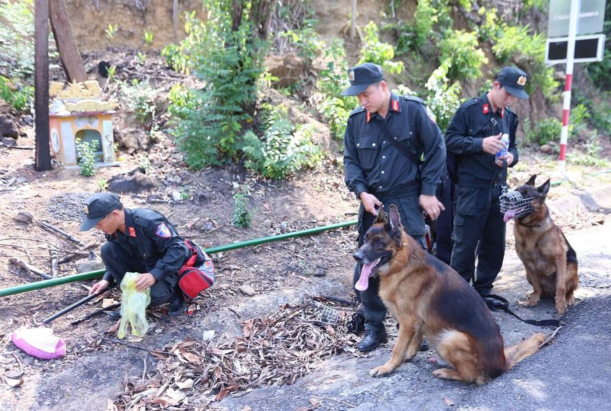Thực hư chuyện chó nghiệp vụ ở Đà Nẵng hy sinh khi truy tìm tội phạm vượt ngục ở đèo Hải Vân 0