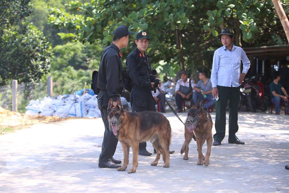 Thực hư chuyện chó nghiệp vụ ở Đà Nẵng hy sinh khi truy tìm tội phạm vượt ngục ở đèo Hải Vân 2