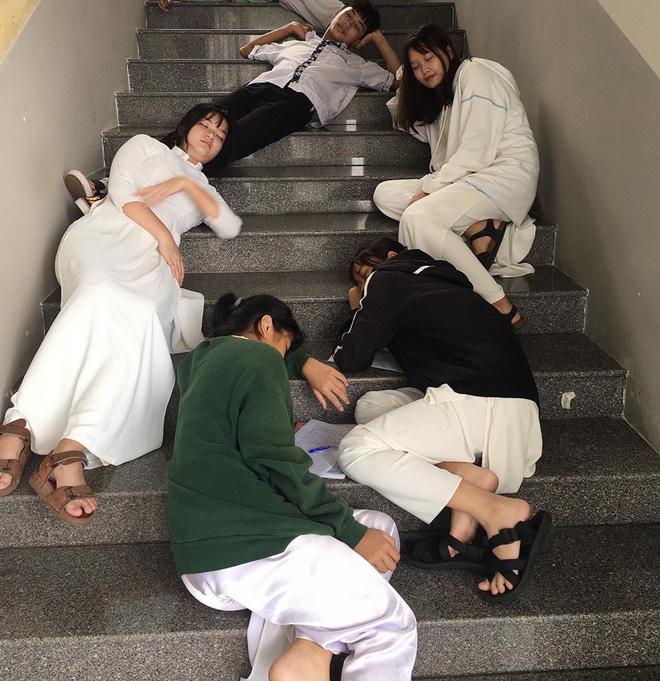 Và cả cầu thang lớp học