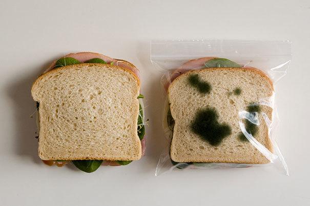 Túi ăn trưa chống trộm này sẽ ngăn đồng nghiệp háu ăn 'chôm mất' bữa trưa ngon miệng của bạn.