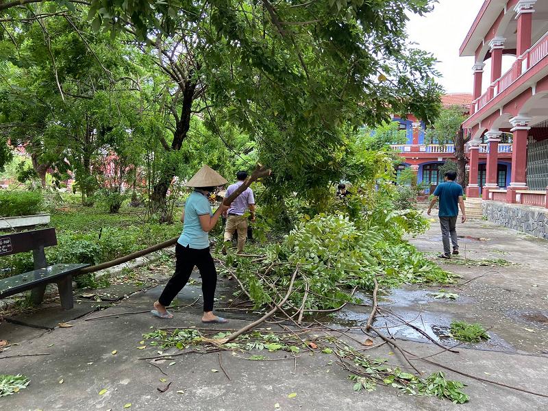 Mưa bão khiến cho hệ thống cây xanh của nhiều trường học ở Huế bị đổ