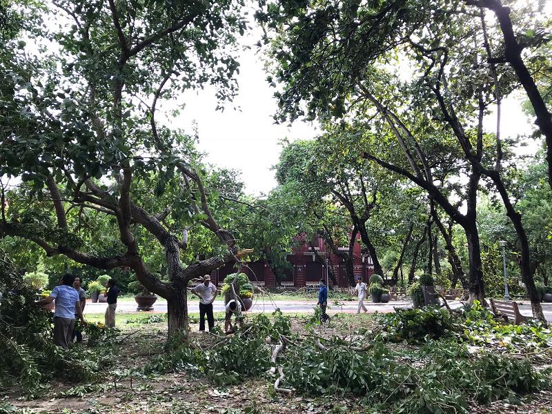 Trường Quốc học Huế bị sập tường rào sau bão 4
