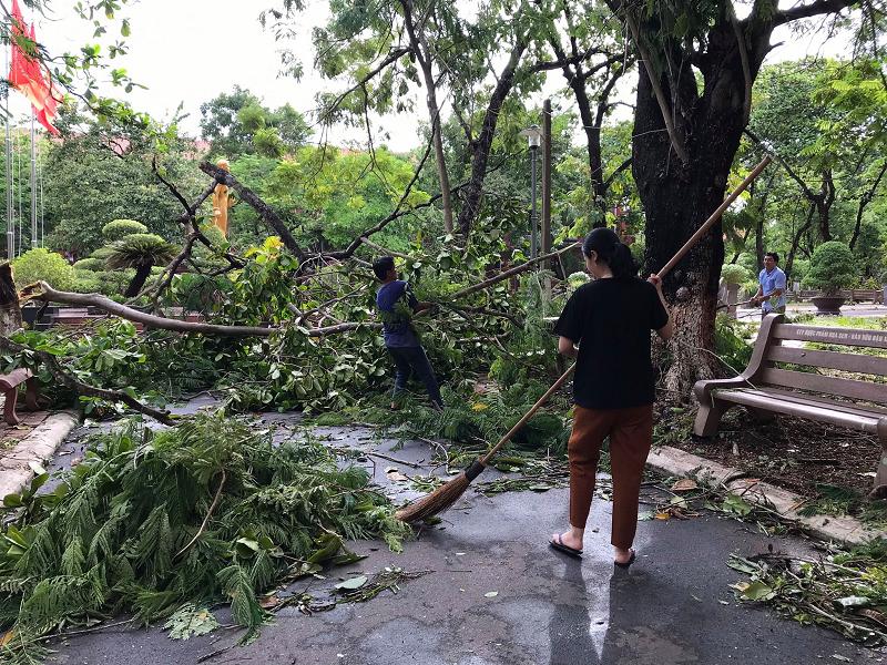 Trường Quốc học Huế bị sập tường rào sau bão 5