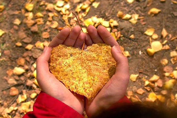 Tháng 10 của 12 cung hoàng đạo, bạn đã sẵn sàng cho một mùa thu lãng mạn nhưng cũng 'cầu kỳ' không kém? 1