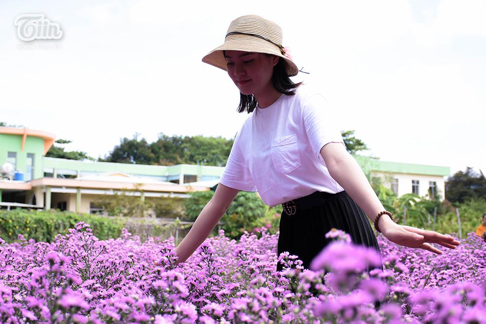 Trong thời gian gần đây, Đà Nẵng liên tiếp có những vườn hoa gây sốt từ hoa hướng dương, cúc họa mi và mới đây nhất là thạch thảo tím. Thông qua những vườn hoa này những người đầu tư mong muốn giới trẻ nâng cao nhận thức bảo vệ môi trường, xây dựng cuộc sống xanh...