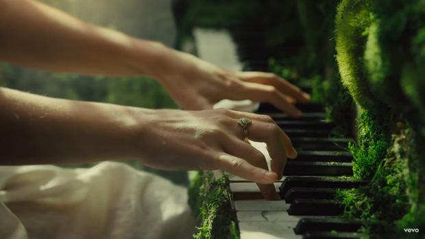 Bàn tay Taylor ngồi đánh đàn