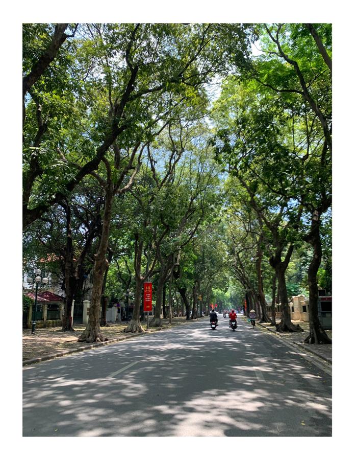 Trên đường ra Yên mình lại gặp một khung cảnh thiết tha trên đường Phan Đình Phùng thế này cơ đấy!