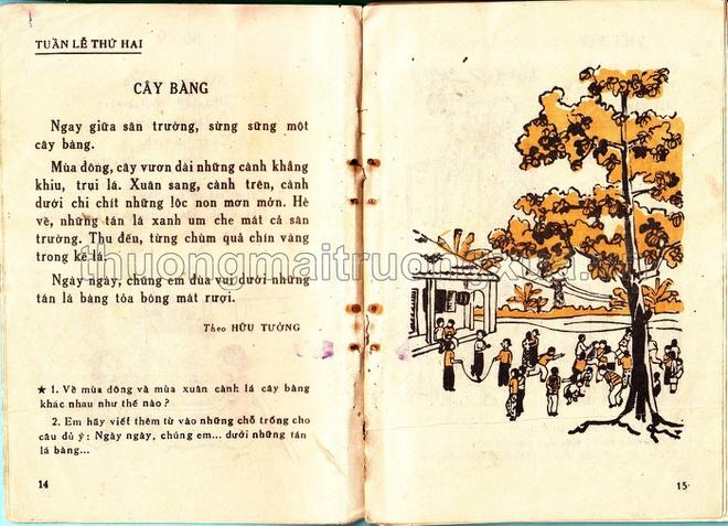 Một bên là bài tập đọc một bên là hình ảnh cây bàng sinh động giúp học sinh dễ hình dung, bài học cũng nhẹ nhàng không quá nặng về mặt kiến thức