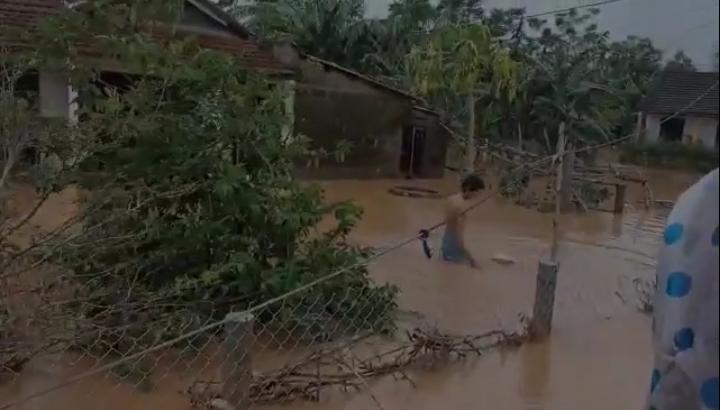 Phần quà nổi lềnh bềnh trên nước, người dân lúi cúi nhặt