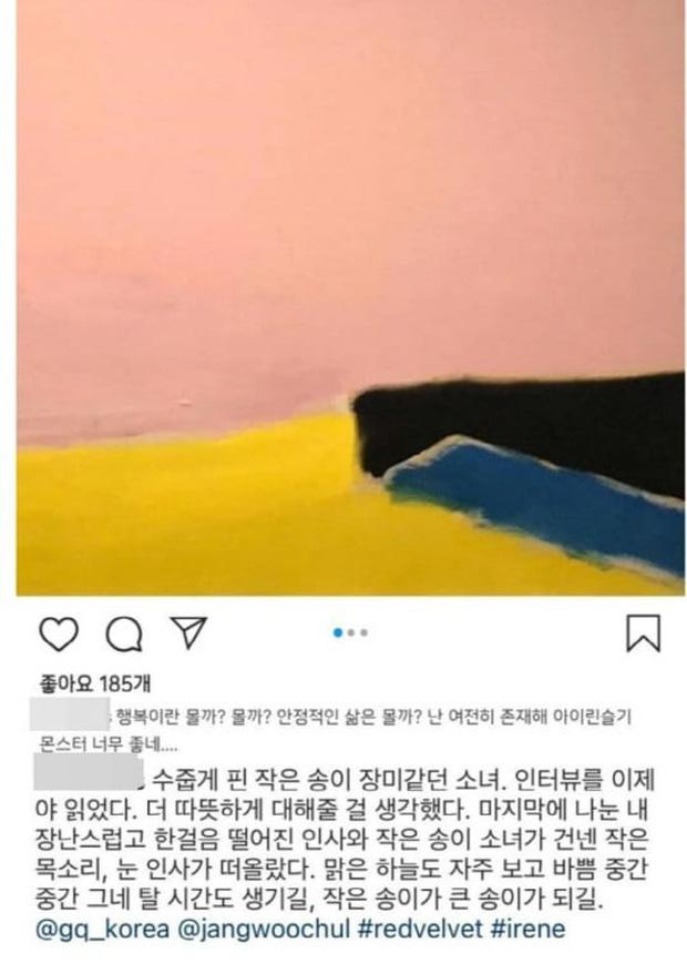 Irene từng đượcKang Kook Hwa khen ngợi 'như bông hồng nhỏ' khi cùng làm việc trước đó.