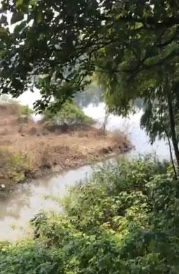 Khu vực sông Nhuệ nơi nữ sinh Hiền bị kẻ ác xô xuống sau khi cướp tài sản.