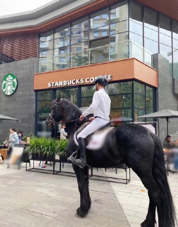 Một chàng trai cưỡi cả ngựa đến.
