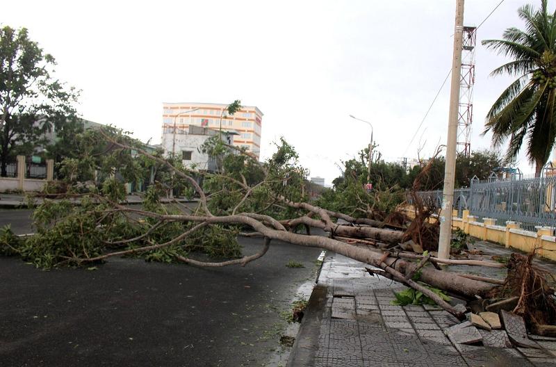 Bão số 9 đi qua khiến cho nhiều trường học ở Đà Nẵng, Quảng Nam, Quảng Ngãi bị thiệt hại nặng nề.