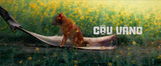 Thước phim đầu tiên của 'Cậu Vàng' được hé lộ nhưng nhìn đi nhìn lại cư dân mạng cứ thấy 'giả trân' 3