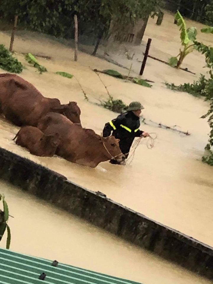 Nước lũ ở Nghệ An chưa rút, nhiều nơi ngập sâu trong nước 4