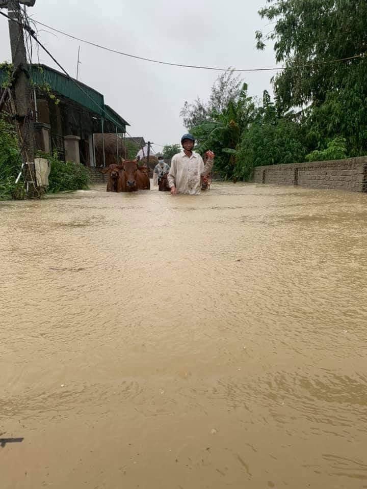 Nước lũ ở Nghệ An chưa rút, nhiều nơi ngập sâu trong nước 1