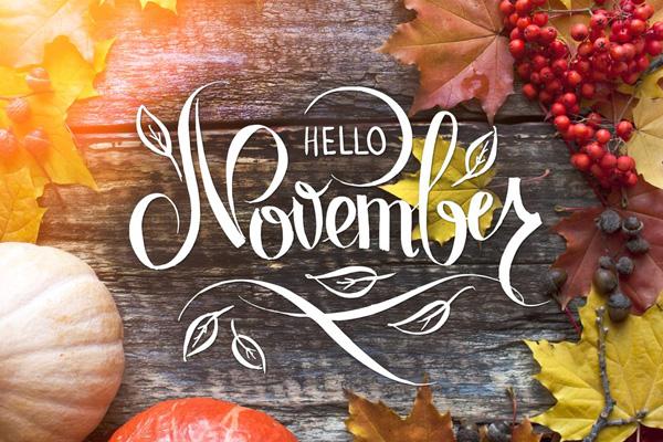 Chào tháng 11, bạn đã sẵn sàng cho những chuyến phiêu lưu kỳ thú? 0