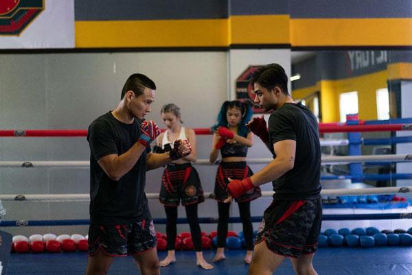 Những câu lạc bộ võ Ta, Võ MMA các bạn trẻ đam mê.