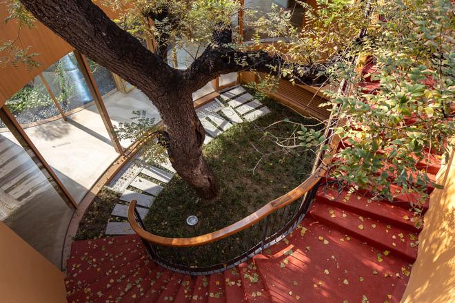 Sân trường trồng nhiều cây cổ thụ tạo bóng mát và được bao bọc bởi các bậc thang đỏ vừa đảm bảo an toàn vừa nổi bật cả góc trường.