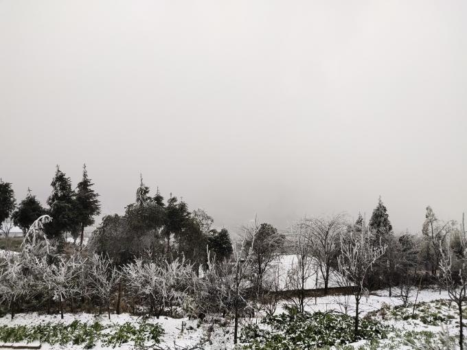 Clip: Tuyết đang rơi trắng xóa ở Y Tý (Lào Cai), khung cảnh đẹp chẳng khác gì trời Âu 2