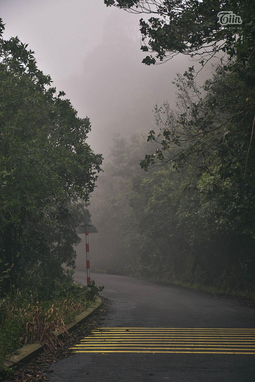 Sương mù bao phủ các lối dẫn lên đỉnh Bàn Cờ - nơi cao nhất của bán đảo Sơn Trà. Vào chiều tối và sáng sớm, mây mù tăng cường hạn chế tầm nhìn, khuyến cáo mọi người không di chuyển vào các khung giờ này.