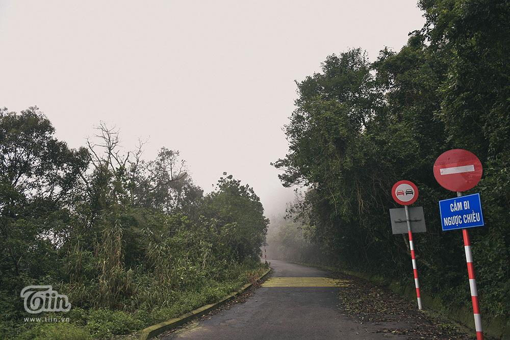 Đà Nẵng lạnh nhất trong 5 năm, mây mù phủ kín đường lên bán đảo Sơn Trà tạo cảnh tuyệt đẹp 10