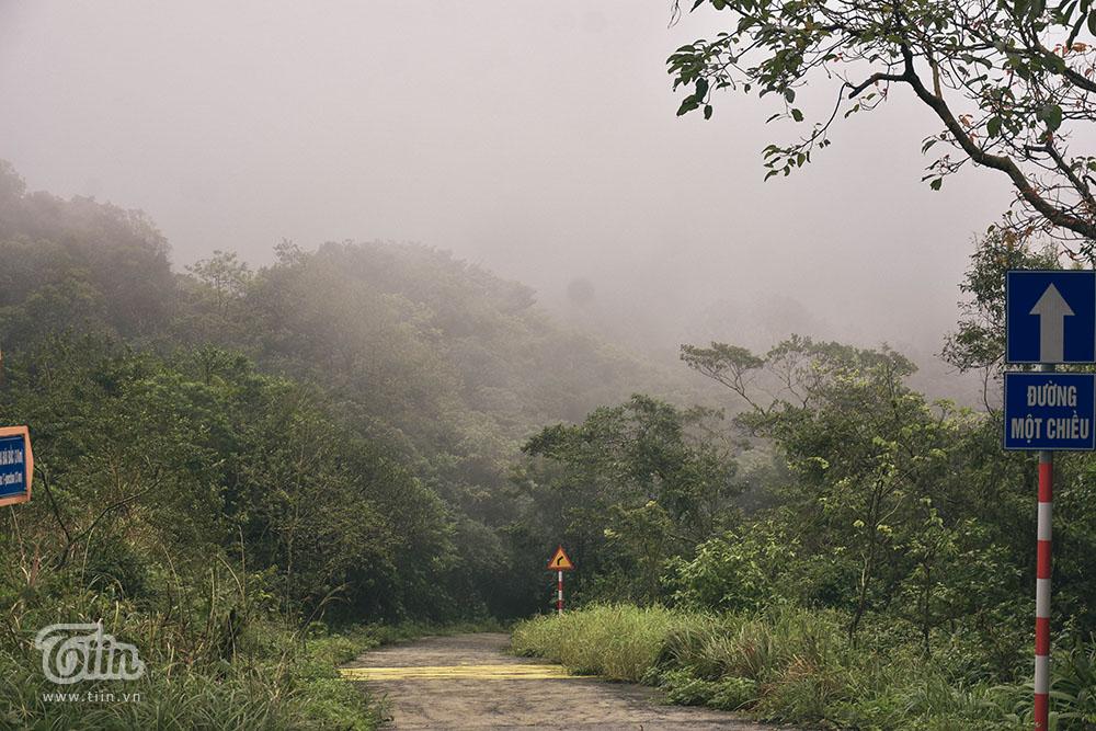 Đà Nẵng lạnh nhất trong 5 năm, mây mù phủ kín đường lên bán đảo Sơn Trà tạo cảnh tuyệt đẹp 11
