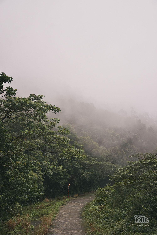 Đà Nẵng lạnh nhất trong 5 năm, mây mù phủ kín đường lên bán đảo Sơn Trà tạo cảnh tuyệt đẹp 12